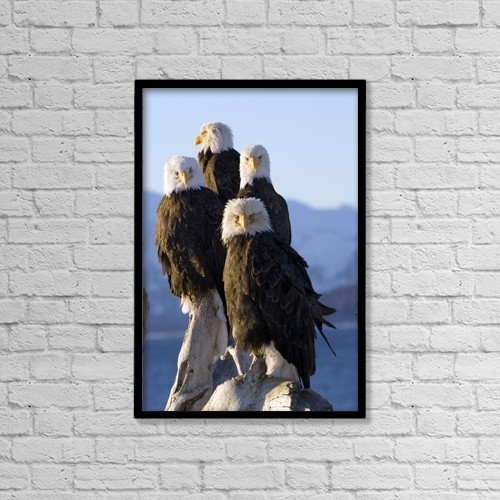 "Printscapes Wall Art: 12"" x 18"" Canvas Print With Black Frame - Animals by Don Pitcher"