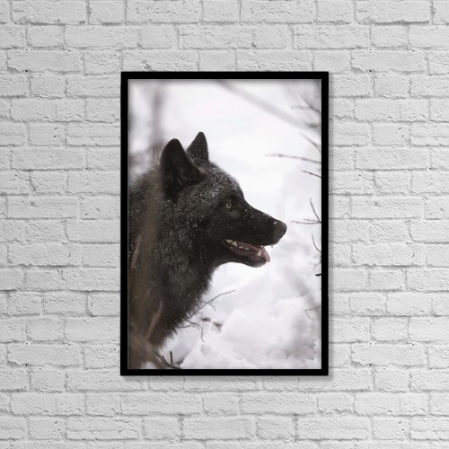 """Printscapes Wall Art: 12"""" x 18"""" Canvas Print With Black Frame - Animals by Calvin Hall"""