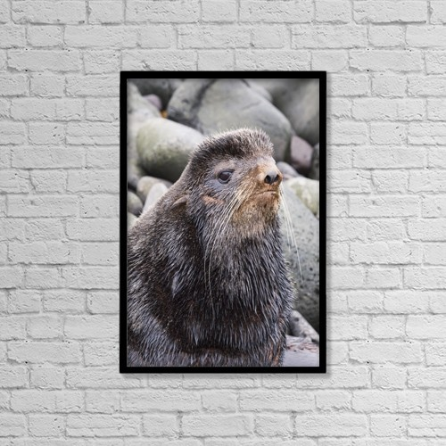 "Printscapes Wall Art: 12"" x 18"" Canvas Print With Black Frame - Animals by John Gibbens"
