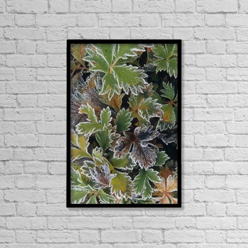 "Printscapes Wall Art: 12"" x 18"" Canvas Print With Black Frame - Other by Calvin Hall"