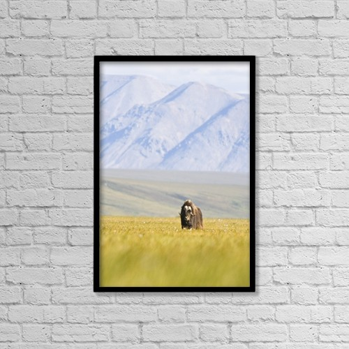"Printscapes Wall Art: 12"" x 18"" Canvas Print With Black Frame - Scenic by Doug Demarest"