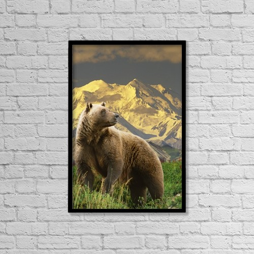 "Printscapes Wall Art: 12"" x 18"" Canvas Print With Black Frame - Composite Grizzly Stands On Tundra With Mt by Michael Jones"