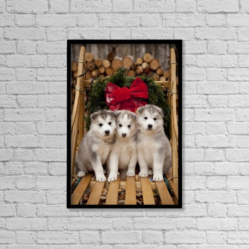 "Printscapes Wall Art: 12"" x 18"" Canvas Print With Black Frame - Animals by Jeff Schultz"