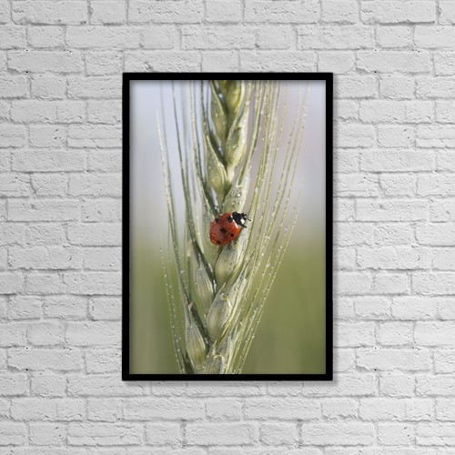 "Printscapes Wall Art: 12"" x 18"" Canvas Print With Black Frame - Animals by Michael Interisano"