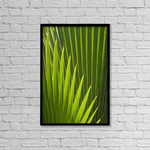 "Printscapes Wall Art: 12"" x 18"" Canvas Print With Black Frame - Detail of palm tree, Grenada by Ian Cumming"