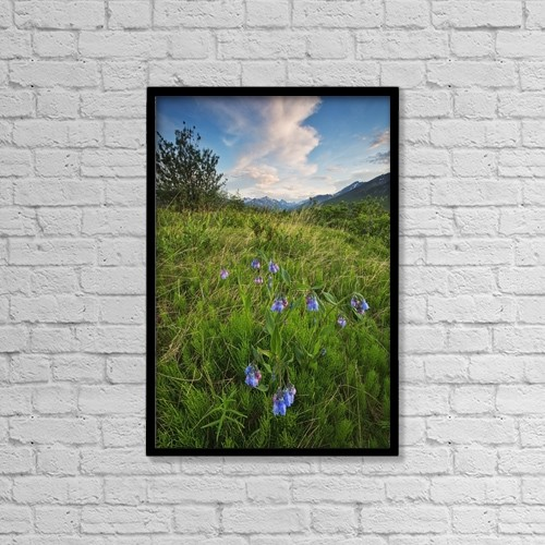 """Printscapes Wall Art: 12"""" x 18"""" Canvas Print With Black Frame - Flowers by Robert Postma"""