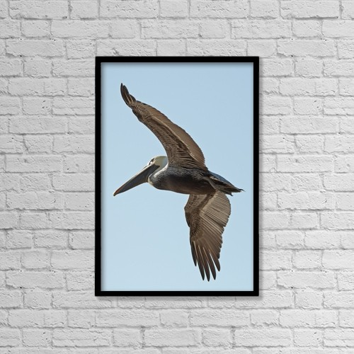 "Printscapes Wall Art: 12"" x 18"" Canvas Print With Black Frame - A bird in flight by Jim Julien"