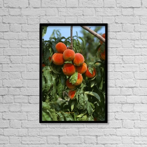 "Printscapes Wall Art: 12"" x 18"" Canvas Print With Black Frame - Agriculture by Robert Bennett"