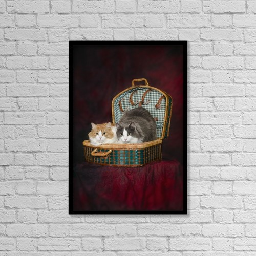 "Printscapes Wall Art: 12"" x 18"" Canvas Print With Black Frame - Portrait of two cats in a basket;St by Corey Hochachka"