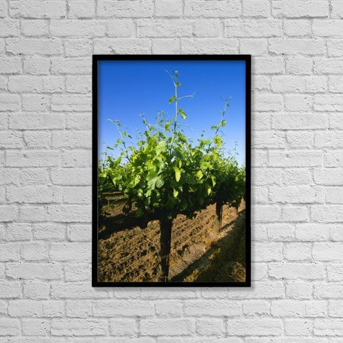 "Printscapes Wall Art: 12"" x 18"" Canvas Print With Black Frame - Agriculture by Kevin Saitta"