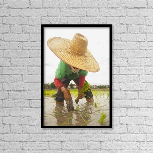 "Printscapes Wall Art: 12"" x 18"" Canvas Print With Black Frame - Planting new rice;Chiang mai thailand by Stuart Corlett"
