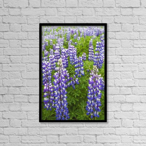 "Printscapes Wall Art: 12"" x 18"" Canvas Print With Black Frame - Flowers by Lynn Wegener"