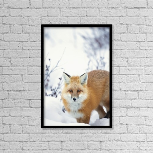 "Printscapes Wall Art: 12"" x 18"" Canvas Print With Black Frame - Animals by Robert Postma"