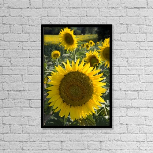 """Printscapes Wall Art: 12"""" x 18"""" Canvas Print With Black Frame - Scenic by Carlos Sanchez Pereyra"""