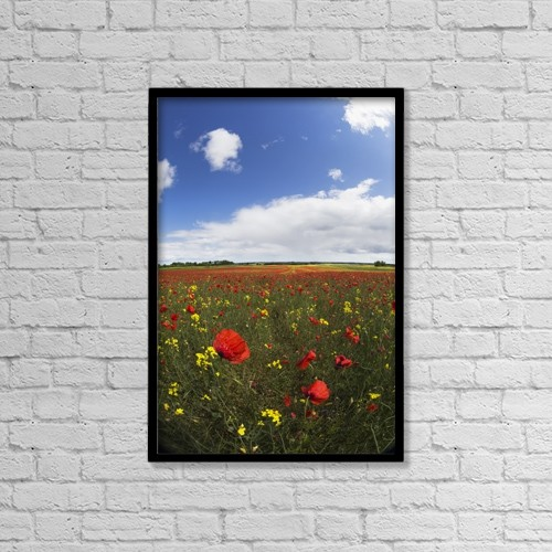 "Printscapes Wall Art: 12"" x 18"" Canvas Print With Black Frame - A Field Of Red And Yellow Wildflowers by John Short"