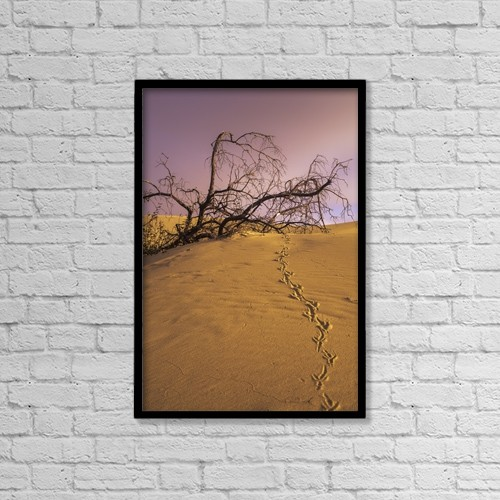 "Printscapes Wall Art: 12"" x 18"" Canvas Print With Black Frame - Raven Tracks Across The Sand Dune by Robert L. Potts"