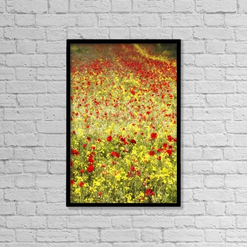 "Printscapes Wall Art: 12"" x 18"" Canvas Print With Black Frame - Abundance Of Red Poppies In A Field by John Short"