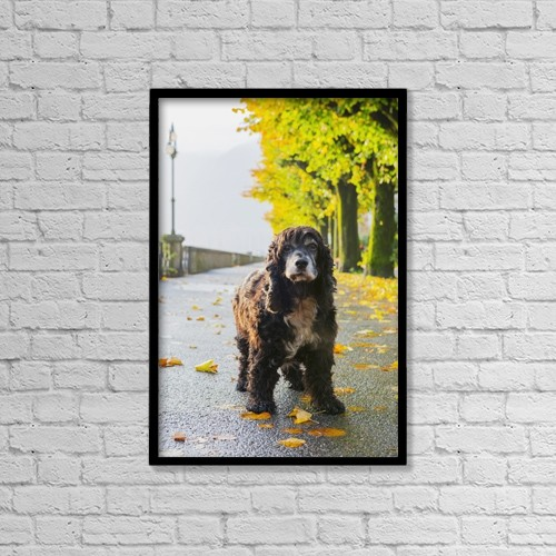 """Printscapes Wall Art: 12"""" x 18"""" Canvas Print With Black Frame - Animals by Mats Silvan"""
