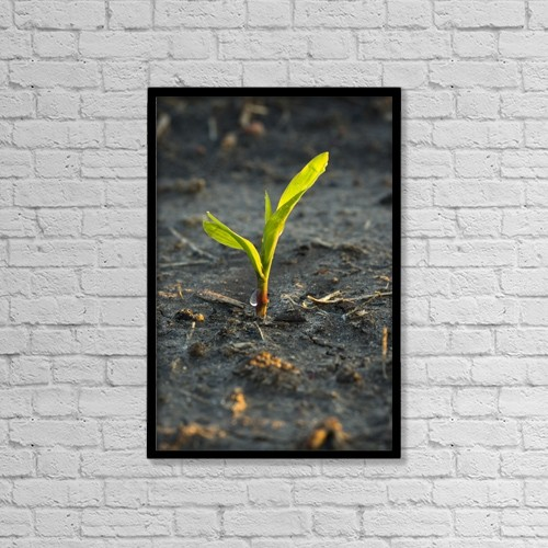 "Printscapes Wall Art: 12"" x 18"" Canvas Print With Black Frame - Agriculture by Scott Sinklier"
