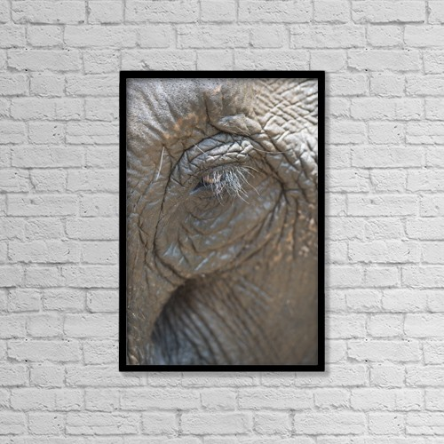"Printscapes Wall Art: 12"" x 18"" Canvas Print With Black Frame - Elephant Eye; Chiang Mai, Thailand by Stuart Corlett"