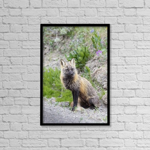 "Printscapes Wall Art: 12"" x 18"" Canvas Print With Black Frame - Animals by Lynn Wegener"