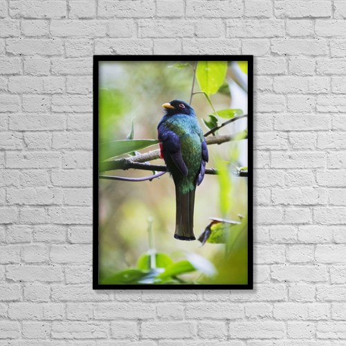 "Printscapes Wall Art: 12"" x 18"" Canvas Print With Black Frame - Creative Imagery by Peter Langer"