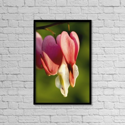 "Printscapes Wall Art: 12"" x 18"" Canvas Print With Black Frame - Flowers by Yves Marcoux"