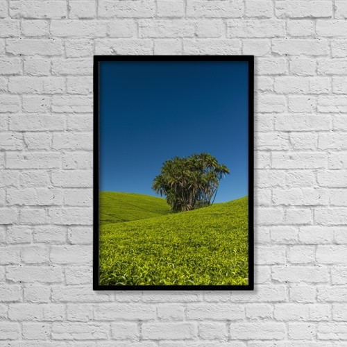 "Printscapes Wall Art: 12"" x 18"" Canvas Print With Black Frame - Agriculture by Ian Cumming"