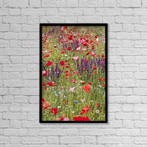"Printscapes Wall Art: 12"" x 18"" Canvas Print With Black Frame - Colourful Wildflowers In A Field by John Doornkamp"