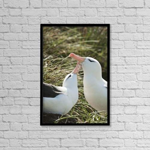 "Printscapes Wall Art: 12"" x 18"" Canvas Print With Black Frame - Animals by Daisy Gilardini"