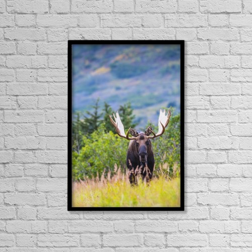 "Printscapes Wall Art: 12"" x 18"" Canvas Print With Black Frame - Animals by Michael Jones"