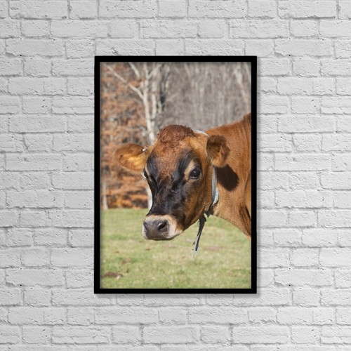 "Printscapes Wall Art: 12"" x 18"" Canvas Print With Black Frame - Animals by Lynn Stone"