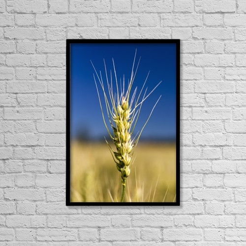 "Printscapes Wall Art: 12"" x 18"" Canvas Print With Black Frame - Agriculture by Michael Interisano"