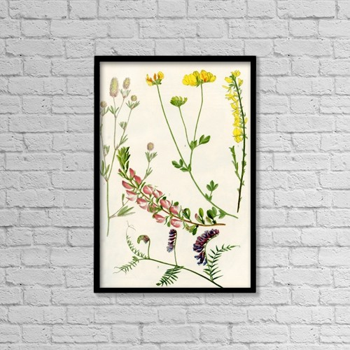 "Printscapes Wall Art: 12"" x 18"" Canvas Print With Black Frame - Wilflowers by Hilary Jane Morgan"