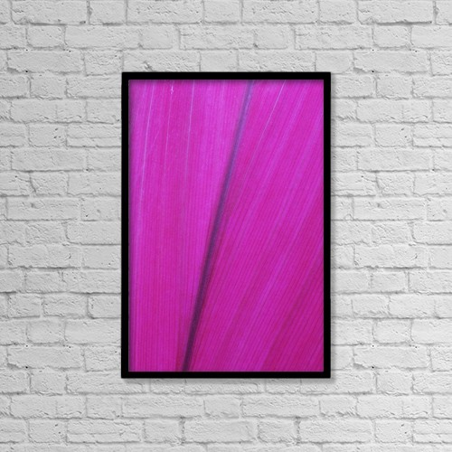 "Printscapes Wall Art: 12"" x 18"" Canvas Print With Black Frame - Close Up Detail Of A Pink Flower Petal by Scott Mead"