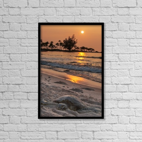 """Printscapes Wall Art: 12"""" x 18"""" Canvas Print With Black Frame - Animals by Carl Johnson"""