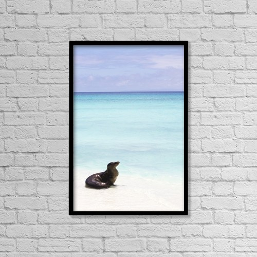 "Printscapes Wall Art: 12"" x 18"" Canvas Print With Black Frame - Marine Life by Chris Caldicott"