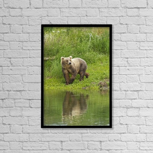 "Printscapes Wall Art: 12"" x 18"" Canvas Print With Black Frame - Animals by Gary Schultz"