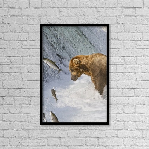 """Printscapes Wall Art: 12"""" x 18"""" Canvas Print With Black Frame - Animals by Gary Schultz"""
