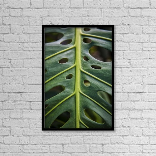 """Printscapes Wall Art: 12"""" x 18"""" Canvas Print With Black Frame - Close Up Of A Green Leaf With Holes In It by Scott Mead"""