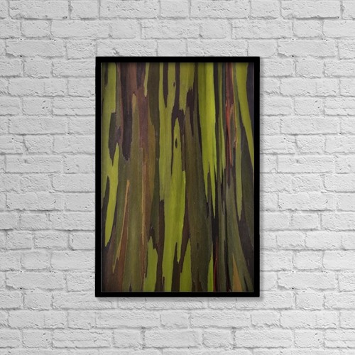 "Printscapes Wall Art: 12"" x 18"" Canvas Print With Black Frame - Nature by Scott Mead"