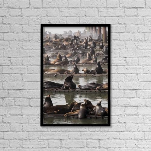 "Printscapes Wall Art: 12"" x 18"" Canvas Print With Black Frame - Marine Life by Robert L. Potts"