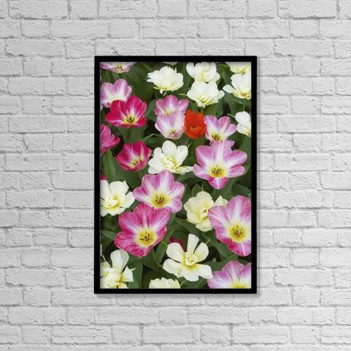 "Printscapes Wall Art: 12"" x 18"" Canvas Print With Black Frame - Flowers At Keukenhof Gardens by Tania Cagnoni"