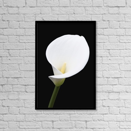 "Printscapes Wall Art: 12"" x 18"" Canvas Print With Black Frame - Flowers by Nick Dale"