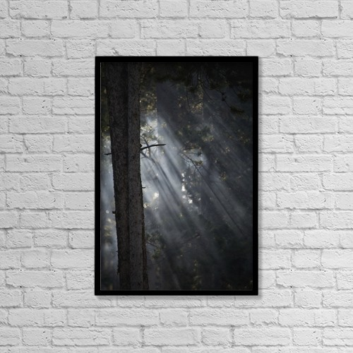"Printscapes Wall Art: 12"" x 18"" Canvas Print With Black Frame - Environmental Issues by Nick Dale"
