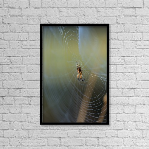 """Printscapes Wall Art: 12"""" x 18"""" Canvas Print With Black Frame - Animals by Robert L. Potts"""