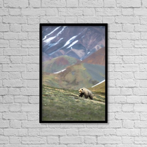 """Printscapes Wall Art: 12"""" x 18"""" Canvas Print With Black Frame - Animals by Carl R. Battreall"""