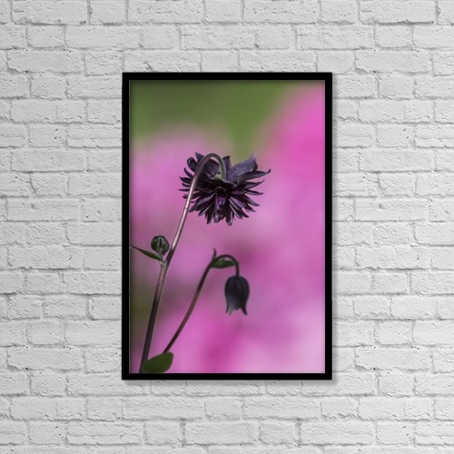 """Printscapes Wall Art: 12"""" x 18"""" Canvas Print With Black Frame - Flowers by Robert L. Potts"""