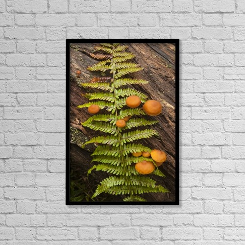 "Printscapes Wall Art: 12"" x 18"" Canvas Print With Black Frame - Nature by Irwin Barrett"