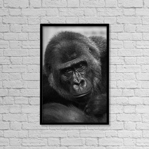 "Printscapes Wall Art: 12"" x 18"" Canvas Print With Black Frame - Animals by Nick Dale"
